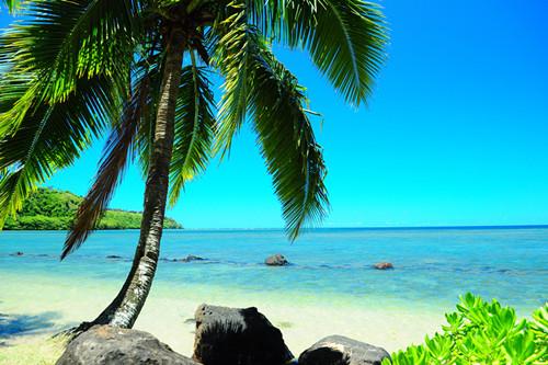 【海泉喷口】,【三温暖海滩】,观赏【兔子岛】,【乌龟岛】,夏威夷族保